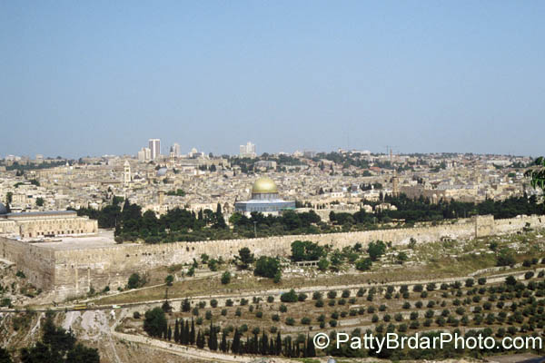 1014 Jerusalem, view from
