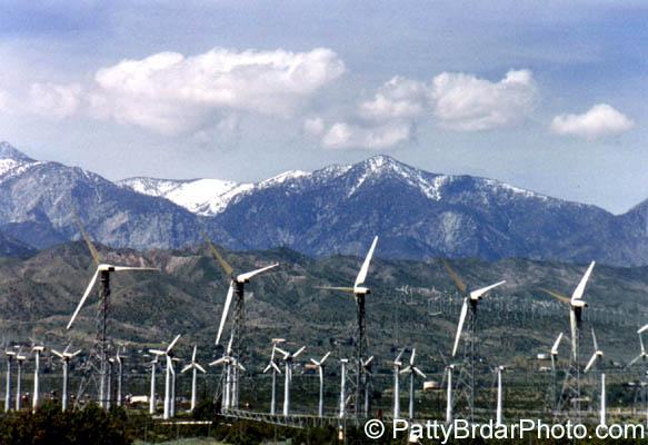 Windmills 3 - фото 8